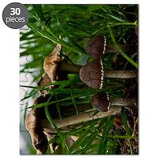 (9) We Three Mushrooms 3 Puzzle