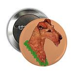 Irish Terrier 2.25