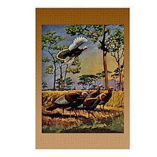 FIN-wild-turkey-art-GRTIN Postcards (Package of 8)