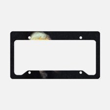 tj-wtf-rect-2 License Plate Holder