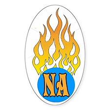 NA FLAMES Decal