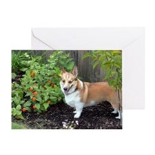 corgi-garden Greeting Card