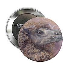 """camel 2.25"""" Button"""