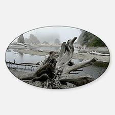 ruby-beach6 Sticker (Oval)
