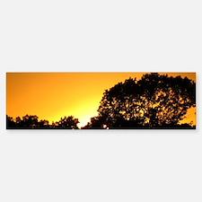 Sunset Over the Summit Sticker (Bumper)
