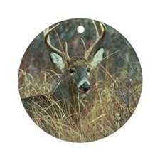 deer1001 Round Ornament