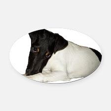 Loki-Innocent Oval Car Magnet