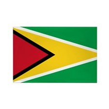 guyana.flag.large Rectangle Magnet