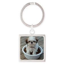 Shih Tzu Puppy in Bowl Square Keychain
