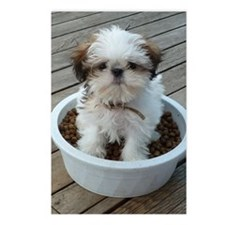 Shih Tzu Puppy in Bowl Postcards (Package of 8)