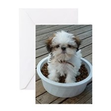 Shih Tzu Puppy in Bowl Greeting Card