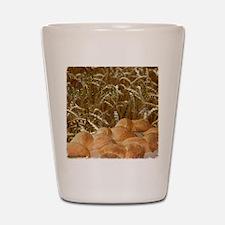 bread_apron2mrg copy Shot Glass