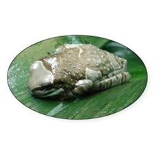 2-milk frog Decal