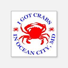 """OC_CRABS Square Sticker 3"""" x 3"""""""