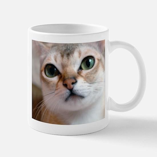 Singapura Cat Mug