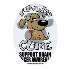 Paws-for-the-Cure-Dog-BRAIN-Cancer Oval Ornament