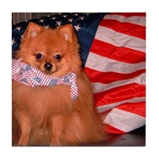 Tucker Tile Patriotic Pom Coaster