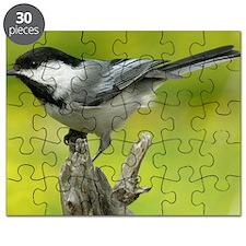 chickadee Puzzle