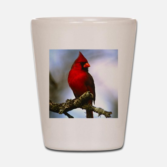 Cardinal Shot Glass
