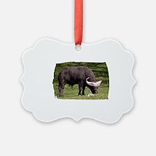 (16) Cape Buffalo Eating Ornament