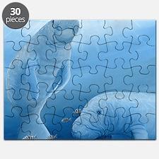manatee haven square Puzzle
