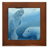 Manatee Framed Tiles