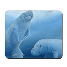 manatee haven square Mousepad