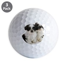 Two Shih Tzu Puppies Golf Ball