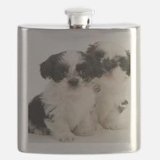Two Shih Tzu Puppies Flask