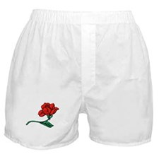 A Single Perfect Red Rose Boxer Shorts