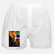 Sonic Ascension Boxer Shorts