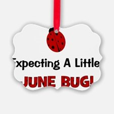 expectingalittlejunebug Ornament