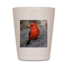 Tanager Shot Glass