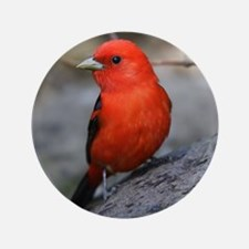 "Tanager 3.5"" Button"