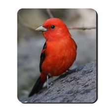 Tanager Mousepad