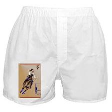 Barrel Horse_journal Boxer Shorts