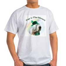 Beardie Morn Ash Grey T-Shirt