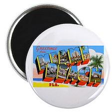 "Miami Beach Florida Greetings 2.25"" Magnet (10 pac"
