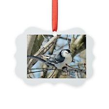 WhiteBrNH5.5x4.25SF Picture Ornament