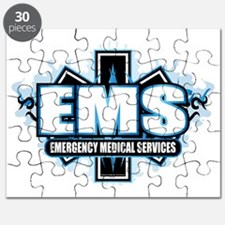 EMS-Tribal-2010 Puzzle