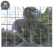 End of the Trail Puzzle
