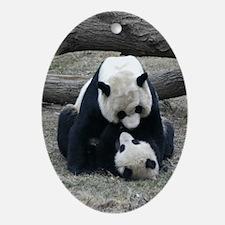 Mei hugs Tai Oval Ornament