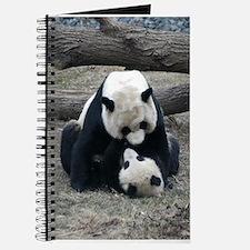 Mei hugs Tai Journal