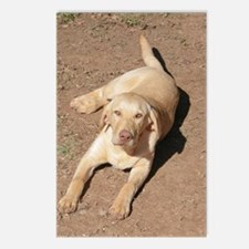 Yellow Lab 1900 x 1600 Postcards (Package of 8)