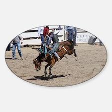 saddle 13 Decal