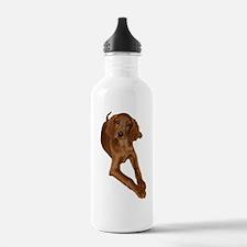 Export Wizard-1 Water Bottle