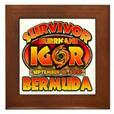 4-igor_cp_bermuda Framed Tile