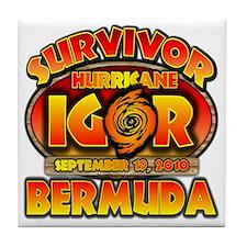 3-igor_cp_bermuda Tile Coaster