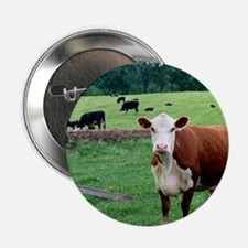"moo 2.25"" Button"