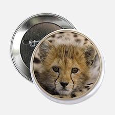 "yule cheetah baby 2.25"" Button"